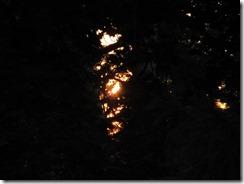 'CHASING THE SUN' by Errol Lee Shepherd_IMG_0105