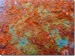 'RUST' by Errol Lee Shepherd_IMG_0014