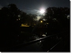 'MOON OVER RAILING-BRIDGE-LAV', by Errol Lee Shepherd_IMG_0077