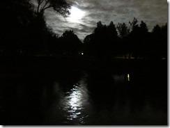 'MOON ON THE PARK', by Errol Lee Shepherd_IMG_0113