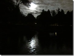 'MOON ON THE PARK', by Errol Lee Shepherd_IMG_0113