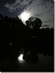 'REFLECTIONS OF TIMELESSNESS', by Errol Lee Shepherd_IMG_0131